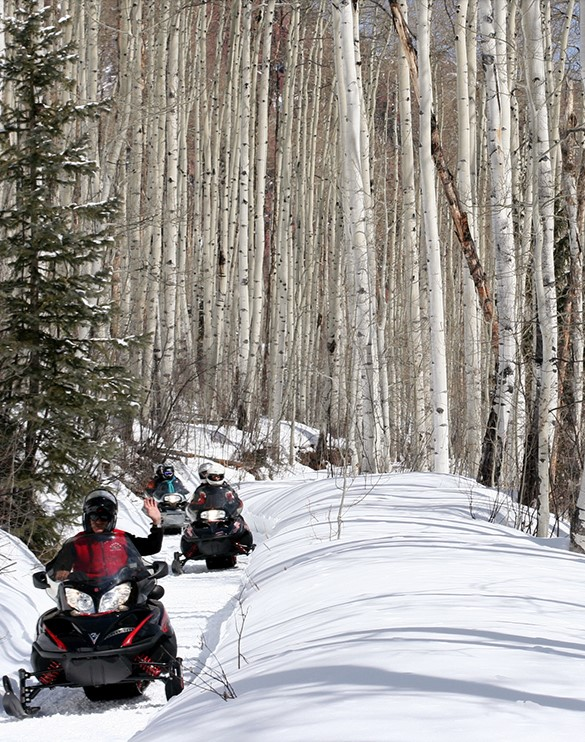 Snowmobiling Lazy7