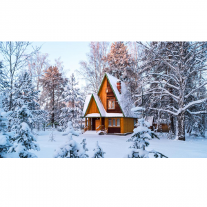 vacation cabin rentals in Colorado